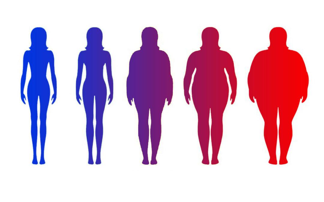 Indice di massa corporea (IMC)